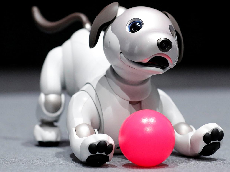سگ رباتیک سونی